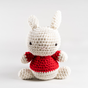 Image for Crochet Rabbit