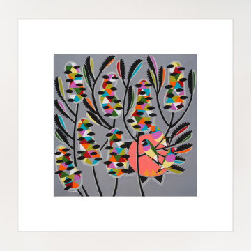 Image for Colours of the Gouldian Finch | Print