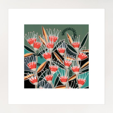 Image for Hakea | Print