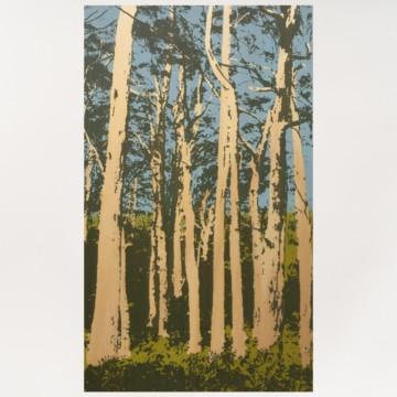 Image for Plywood Panel | Karri Trees