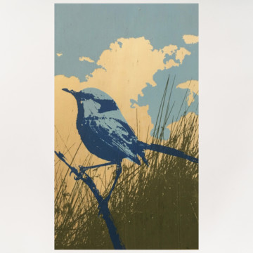 Image for Plywood Panel | Splendid Blue Fairy Wren