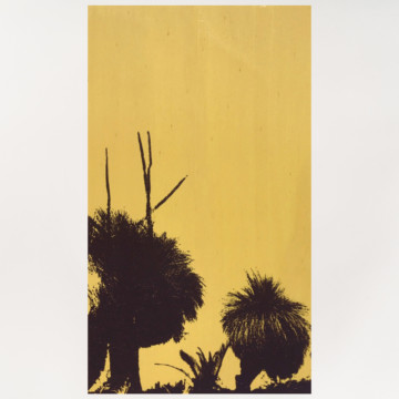Image for Plywood Panel | Grass Trees