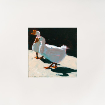Image for Card | Geese