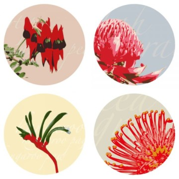 Image for Coasters | Natives